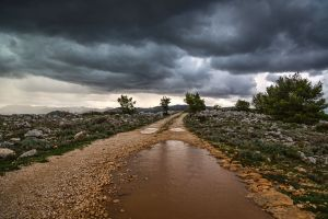 storm93.jpg
