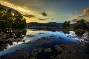 The Primordial Lake