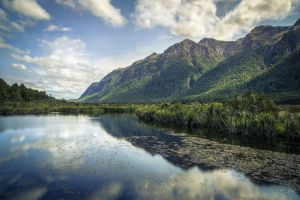 Classic NZ Landscape