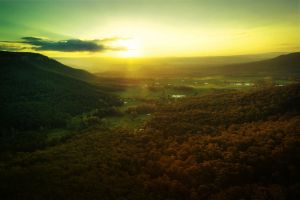 Valley sun.